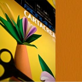 ALBUM C4 C/COPERTINA IN PPL CARTA DA DISEGNO 24X33CM 224GR 20FG RUVIDO CANSON - 400048293