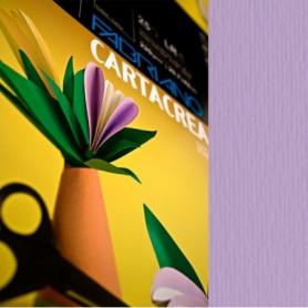 ALBUM C4 C/COPERTINA IN PPL CARTA DA DISEGNO 24X33CM 200GR 20FG LISCIO CANSON - 400048297